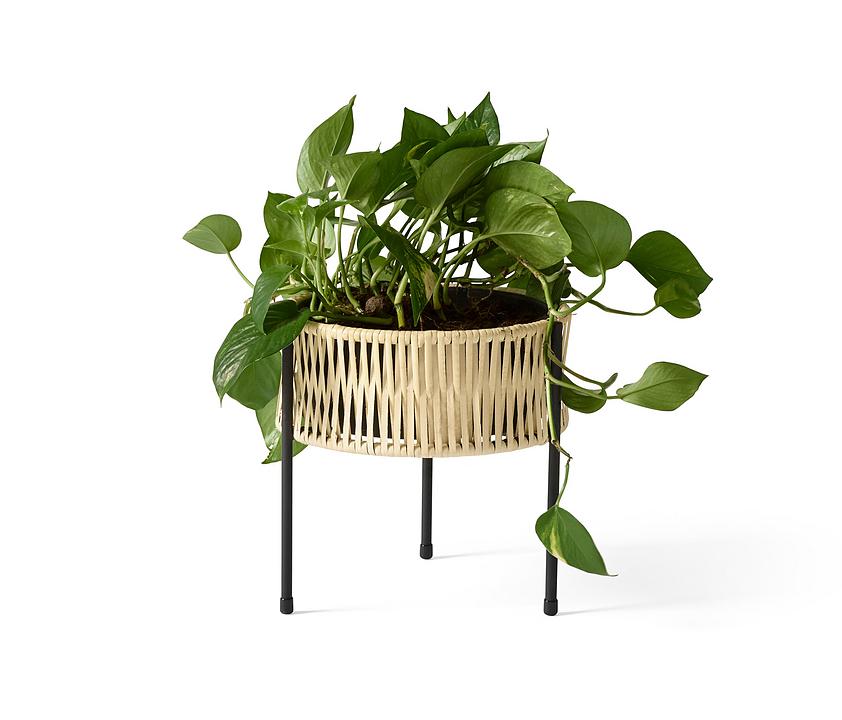Planter - Umanoff