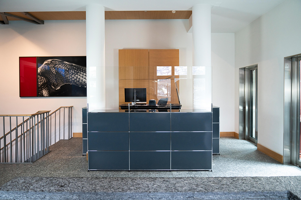 Reception Station and Protection Screen - Haller