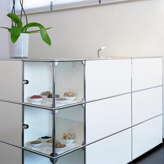 Reception Station and Shelves - Haller