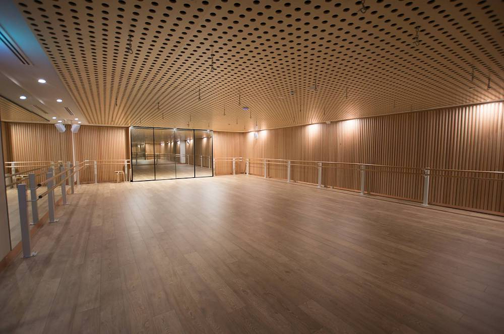 Plywood - DesignerPly Perforated