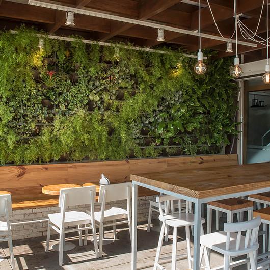 Telhado verde e Jardim vertical