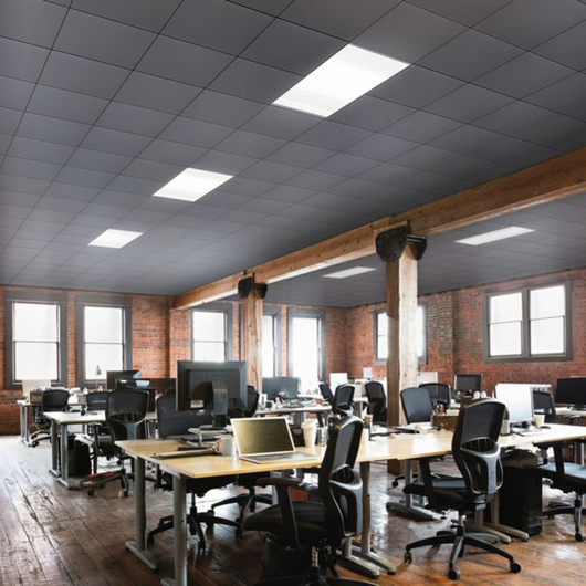 MetalWorks™ Clip-on Sistema de Plafón / Armstrong Ceilings