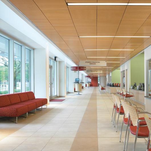 WoodWorks® Tegular y Vector Sistemas de Plafón / Armstrong Ceilings