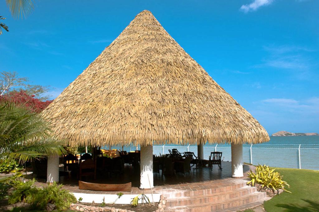 Techo de hojas de polietileno modelo aloha de palmex for Modelos de techos