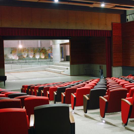 Butaca Modelo University