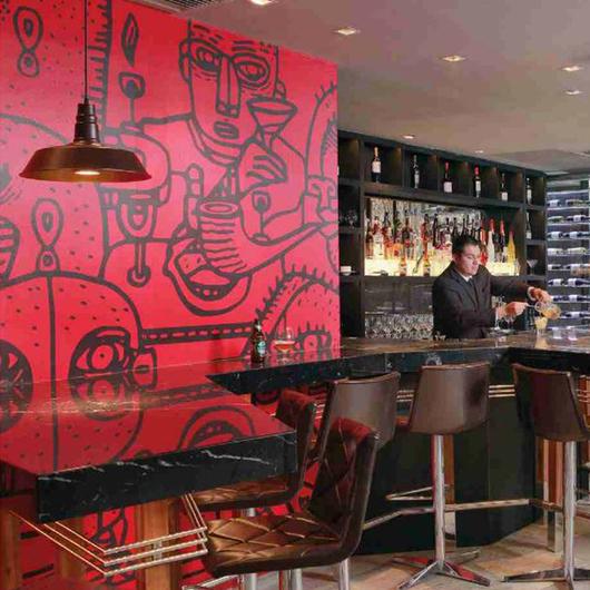 Papeles Murales en Hotel Cumbres de Lastarria