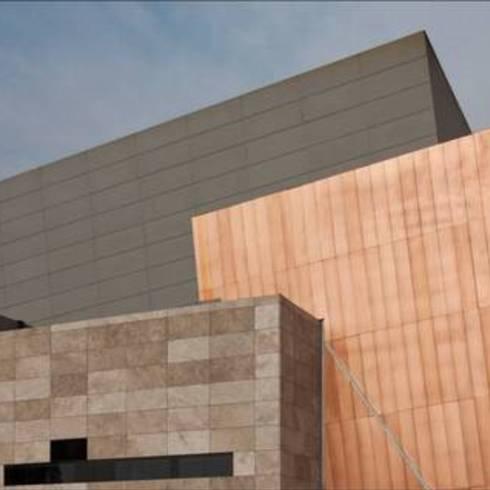 Natura Pro en Teatro Nacional de Lima, Perú - Pizarreño / Etex Chile