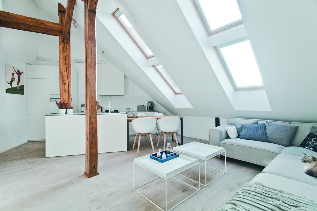 Wooden pivot roof windows FTP-V