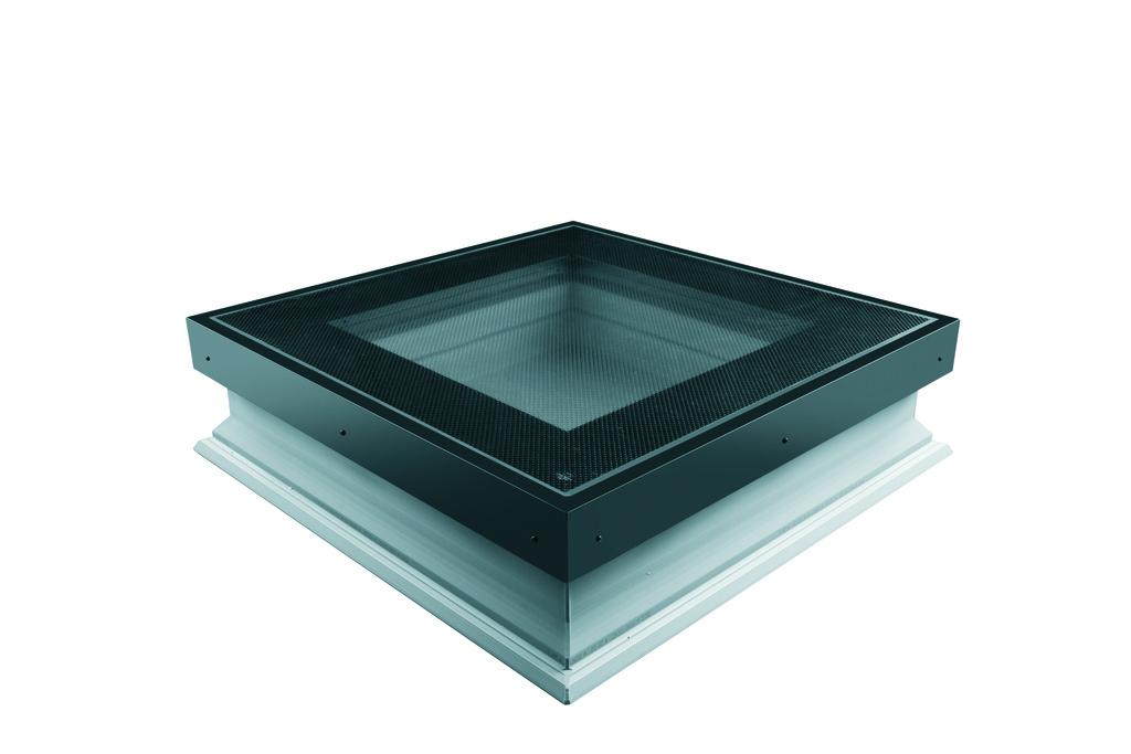Flat Roof Windows DXW