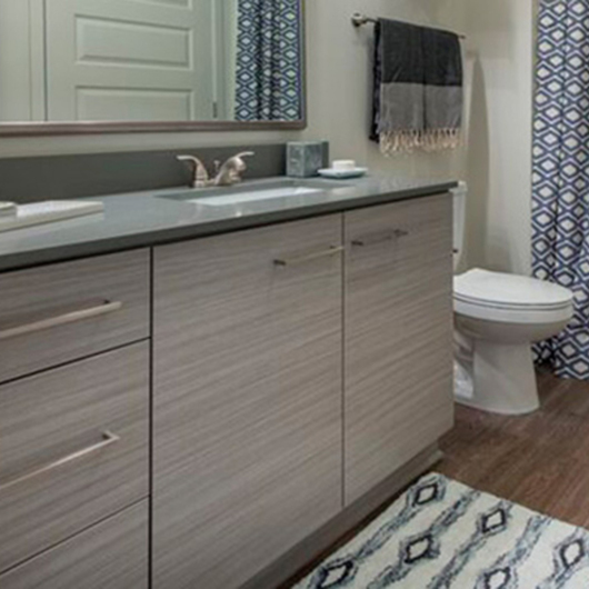 Kitchen and bathrooms in Alexan On Krog apartments