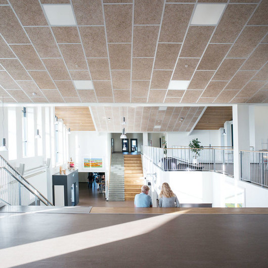 Acoustic Panels - Natural Wood