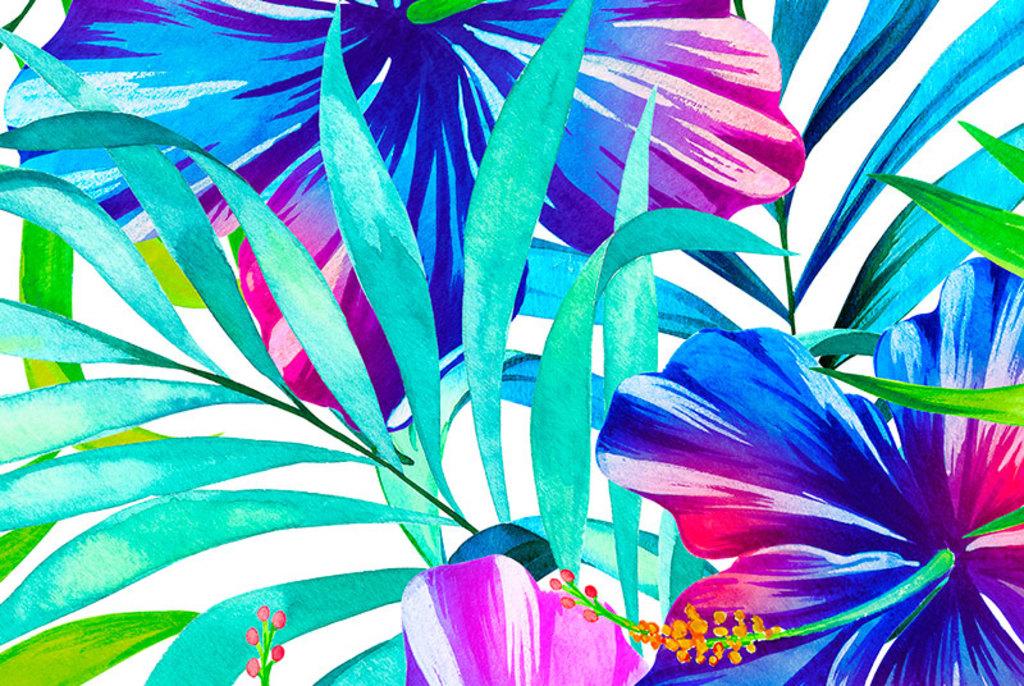 Papeles Murales con Diseño - Colecciones Natura/Spring